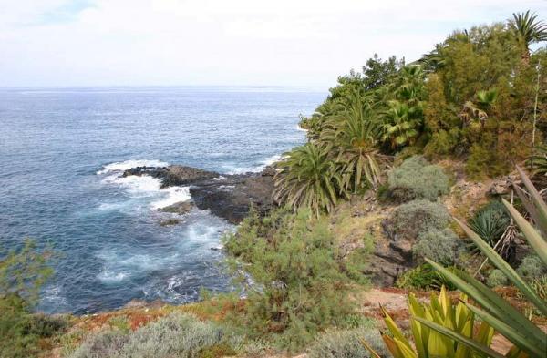 Tenerife entre terre et mer